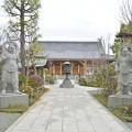 写真: DSC_7450 祥泉寺・・・4