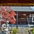 写真: DSC_7638 戒翁寺...3