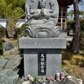 写真: DSC_7644 戒翁寺...4