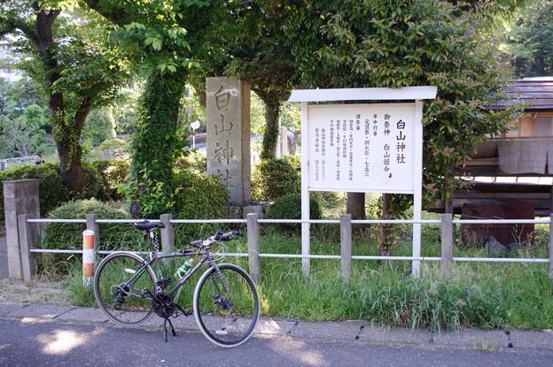 DSC_8056 白山神社..