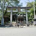 DSC_8672 熊野神社