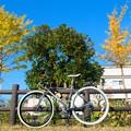 DSC_9400 16-9 Color