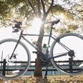 写真: DSC_9390 16-9 自転車、もみじと...。