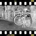 Photos: DSC_8923 MonoChrome Film  ネガ...1