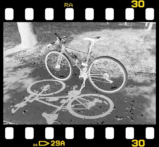 DSC_8990 MonoChromejpg Film ネガ...2