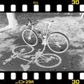 Photos: DSC_8990 MonoChromejpg Film ネガ...2