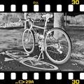 Photos: DSC_8998 16-9 MonoChrome Film ネガ...3