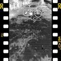 Photos: DSC_8958 MonoChrome Film ネガ...6