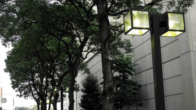 DSC00433 (1) 16-9 街路灯...A