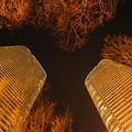 Photos: DSC09105 武蔵小杉周辺を夜景と散歩...4