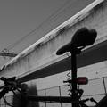 Photos: 自転車と...3