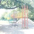Photos: DSC03455 公園巡り