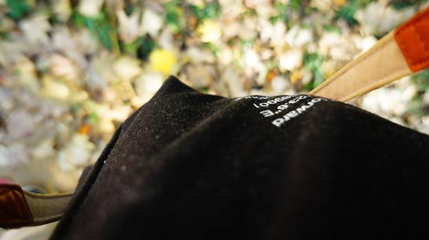 バッグと秋の散歩