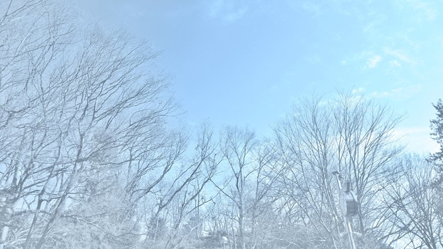 Photos: DSC07757 MonoChrome+HighKey+Blue調