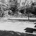 _DSC7387 人っ気のない公園