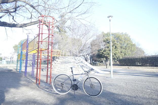 稲田公園 ハイキー