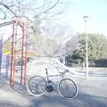 Photos: 稲田公園 ハイキー