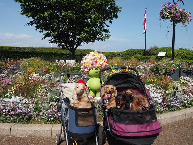 緑化フェア『港の見える丘公園』