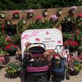 写真: 緑化フェア『人形の家となりの公園』