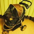 写真: 新しいカート イビヤヤ
