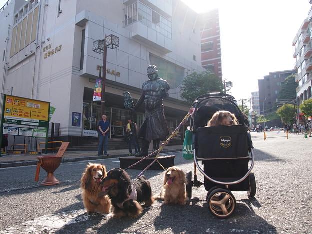 写真: 野毛山大道芸