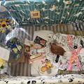 Photos: お花とご飯とオヤツに囲まれて