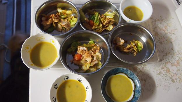 鶏ムネ肉と野菜炒めとスープ犬用