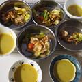 Photos: 鶏ムネ肉と野菜炒めとスープ犬用