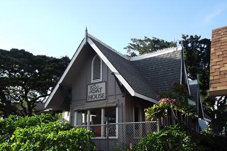 ハワイ・ヒューマンソサエティー0629