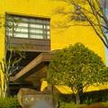 Photos: 大井町役場