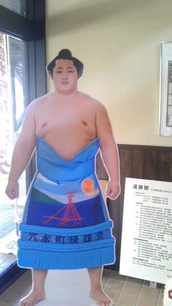 石川県穴水町出身の遠藤関
