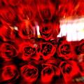 写真: Burning Roses