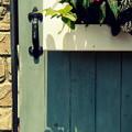 写真: 花影の扉