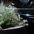 写真: 花束を添えて
