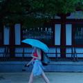 写真: にわか雨 四天王寺