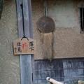 Photos: 落柿舎にて