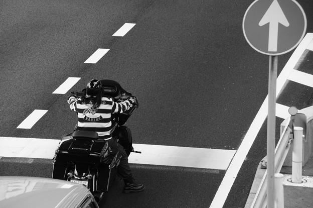 Photos: Heavy Rider