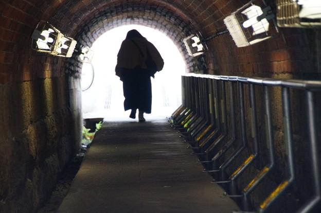 Photos: くぐる(まんぼうトンネル)