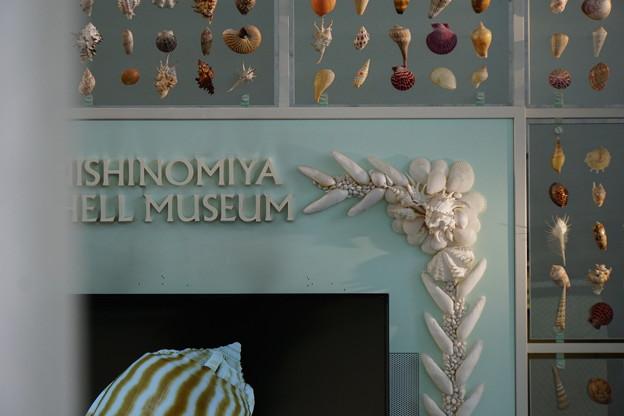 小さな博物館