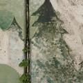 等伯松林図風防潮堤壁画