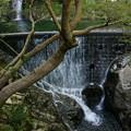 Photos: 滝のある風景