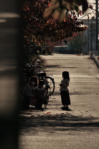 小春日和の散歩道
