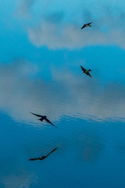 Photos: 空と水面