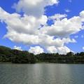 高松の池 (3)