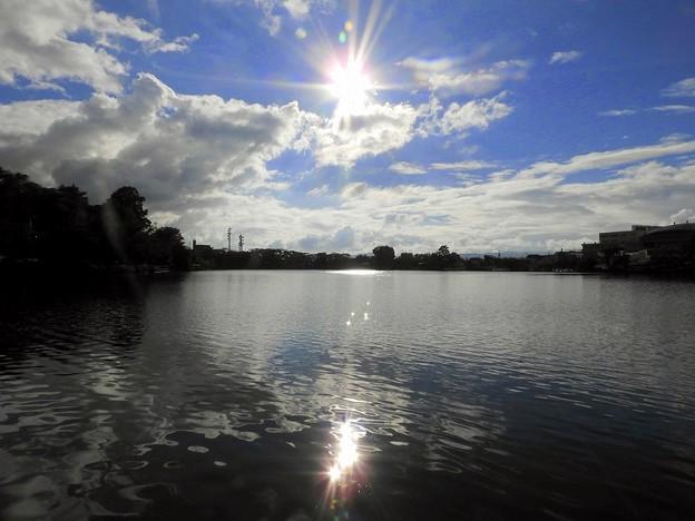 Photos: 高松の池 (3)