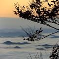 鬼嶽稲荷神社より望む雲海(6)