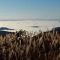 写真: 大江山・航空管制塔より望む雲海(3)