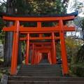 写真: 有子山稲荷神社(3)