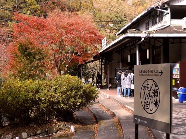 叡山ケーブル・八瀬駅(2)