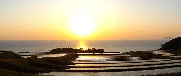 夜明けの棚田(3)